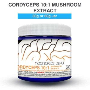 Which is the Best Cordyceps Mushroom for You? - Nootropics