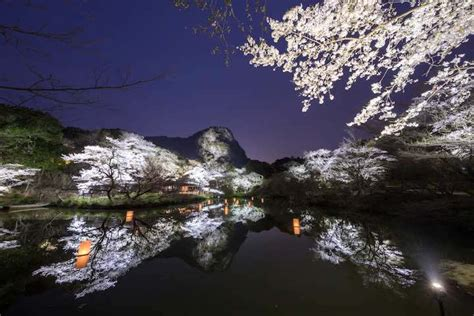 Cherry blossoms and autumn colours in Kyushu, Japan (pics