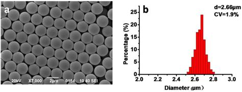 Materials   Free Full-Text   Preparation of Porous Poly