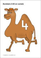 1000+ images about Thema kamelen kl, Camel theme